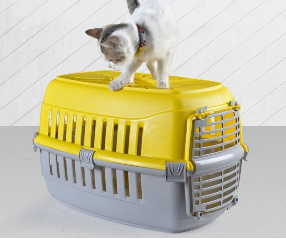 Pet Carrier Box 34-49-31.5cm