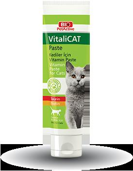 Vitalicat Paste Multivitamin Paste For Cats 100ml