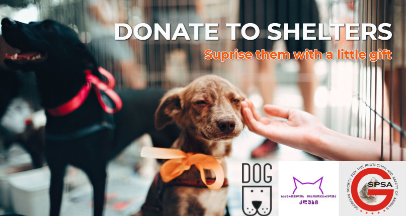 Donate for Shelters