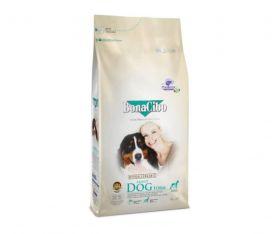 Bonacibo Form and Senior Dog